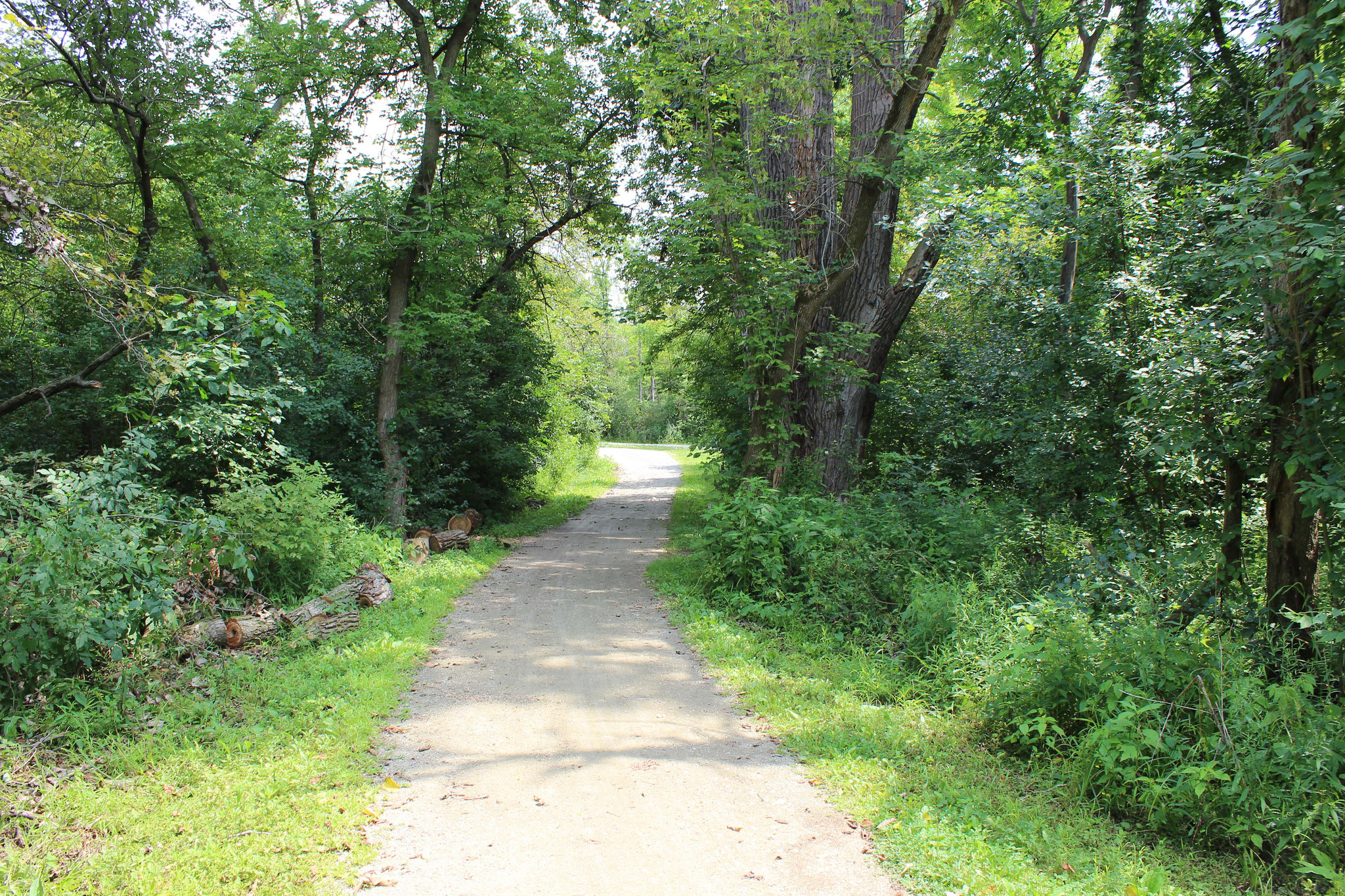 Canton Trail image 2